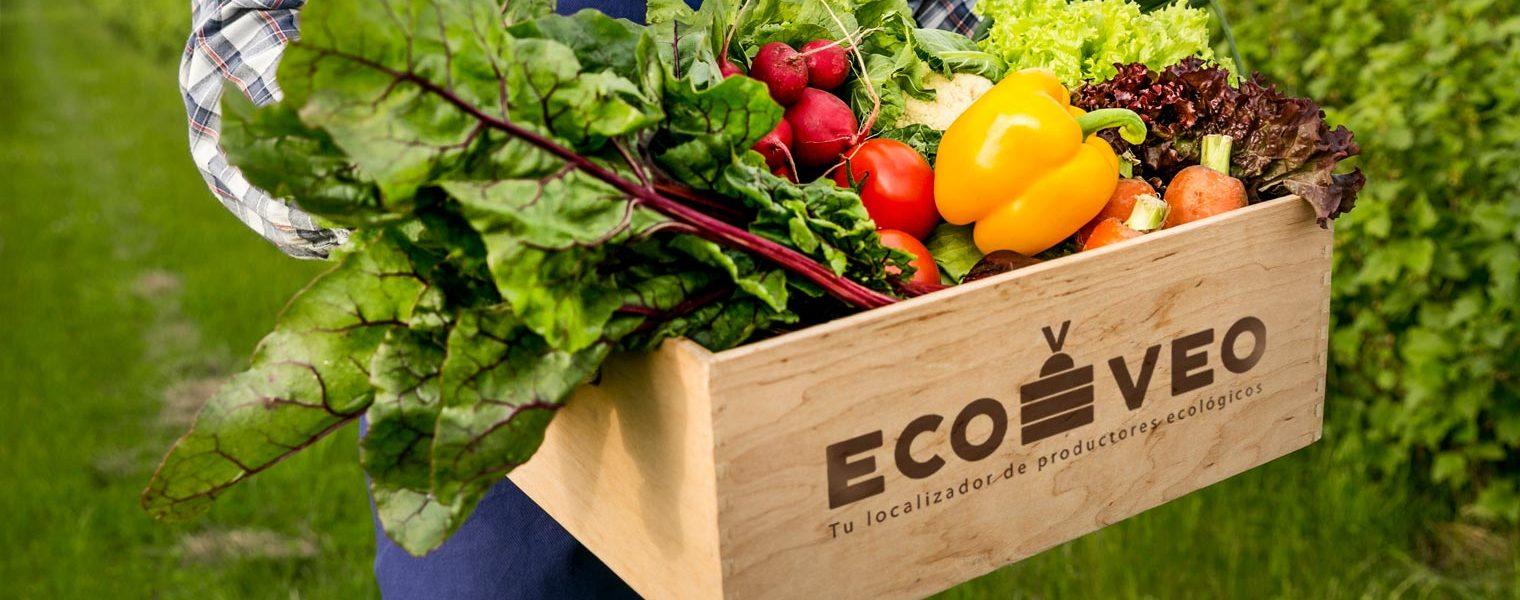 Agricultor con caja de verduras
